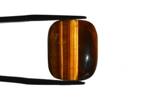 tigers-eye-cushion-cab6